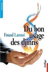 Du Bon Usage Des Djinns