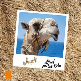 Le dromadaire (arabe)