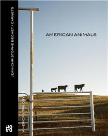 Carnet #8. American Animals.