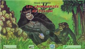 Les chimpanzés de Bossou